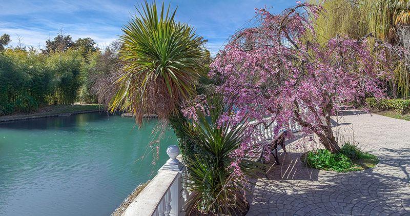 Парк «Южные культуры» в Адлере, адрес, цены 2021 года, как добраться