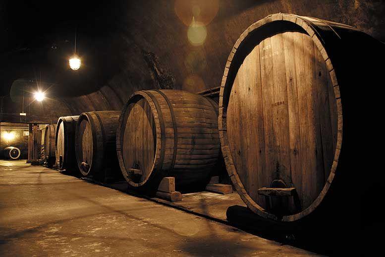 Абрау-Дюрсо завод шампанских вин в Новороссийске, цена, адрес, как проехать, телефон.