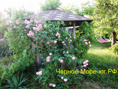 Керчь частный сектор по ул. Генерала Косоногова в мкр. Героевское