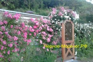 Частный дом «На Речной»  в Небуге