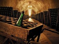 Подвалы с вином
