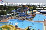 Аквапарк «Бегемот» в Геленджике, описание, как проехать, цены, адрес, режим работы, отзывы туристов.