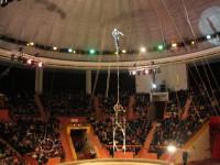 Главный цирк в Сочи - представления для взрослых и детей, описание, режим работы, телефон, как проехать, адрес.