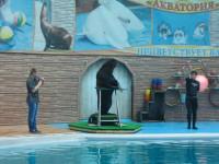 Дельфинарий «Акватория»
