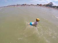Фотографии пляжа Детский в городе Ейск - отзывы туристов, вопрос ответ, подробное описание нА 2021 год.