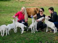 Эко ферма – «Экзархо» в Сочи