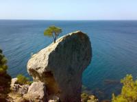Как отдохнуть в Крыму