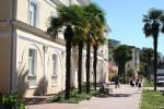 Хоста, отличное место для отдыха на берегу Черного моря