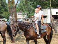 Конные прогулки для самых маленьких