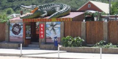 Крокодиловая ферма в станице Голубицкая – погружение в дикую природу, описание, как проехать, режим работы, отзывы, фотографии.