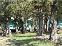 Можжевеловая роща – настоящий лечебный парк в Кабардинке