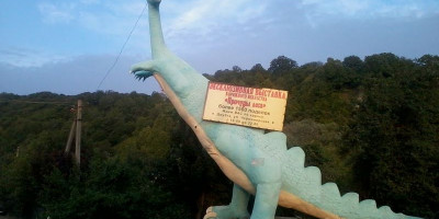 Музей «Причуды леса» в Джубге цена адрес как проехать описание отзывы