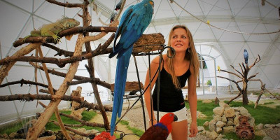 Парк птиц в Коктебеле, описание отзывы фото режим работы телефон адрес как проехать.
