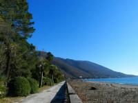 Пляжи в Старой Гагре - отзывы туристов, свежие фотографии 2021 год
