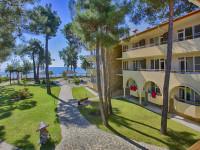Пляж клубного отеля «Дельфин» в поселке Пицунда – как проехать, режим работы, инфраструктура, месторасположение.