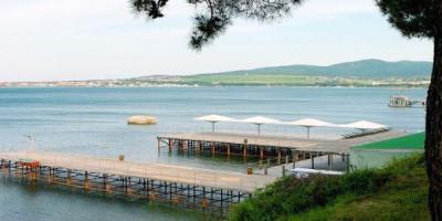 Пляж Сосновая роща на лето 2021 года, отзывы, инфраструктура, как проехать