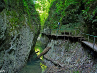 Свирское ущелье в Лазаревском
