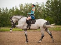 Обученный конь